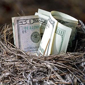A bird nest full of money © David R. Frazier Photolibrary, Inc., Alamy